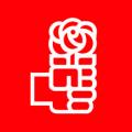 Logo PSOE Actual